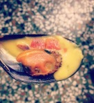 mussel-plaka